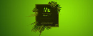 Responsive websites maken met Adobe Muse